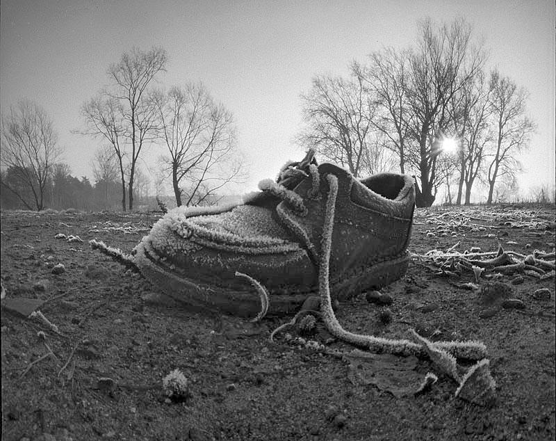 Zdjęcie: Cezary Dybowski
